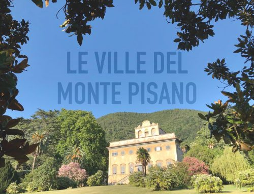 Le Ville del Monte Pisano