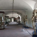 Galleria Storica
