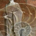 Galileo fibonacci pisa visita guidata guided tour